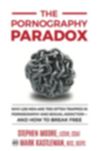 LDS-Pornoraphy-Paradox-Cover.png