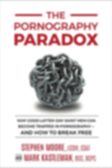 The Pornography Paradox 6x9 cover - TITL