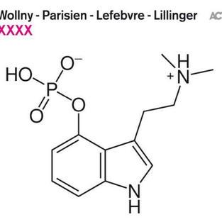 WOLLNY-PARISIEN-LEFEBVRE-LILLINGER