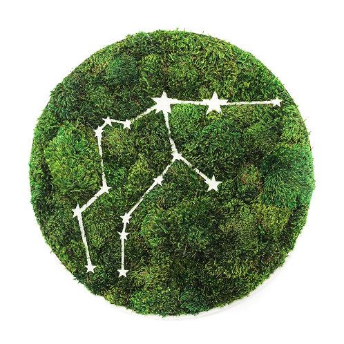 Yosun Horoskop