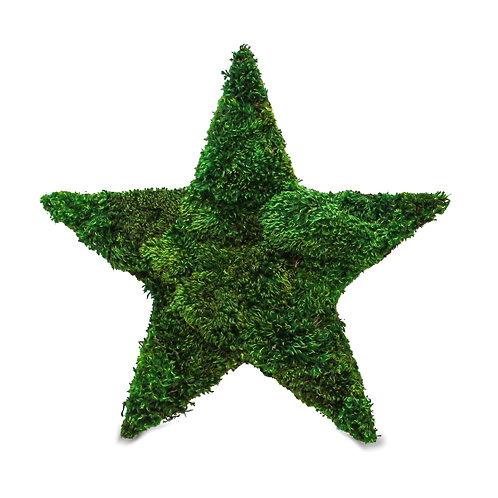 Yosun Yıldız