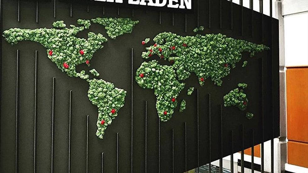 Yosun- ReindeerMoss  Dünya Haritası