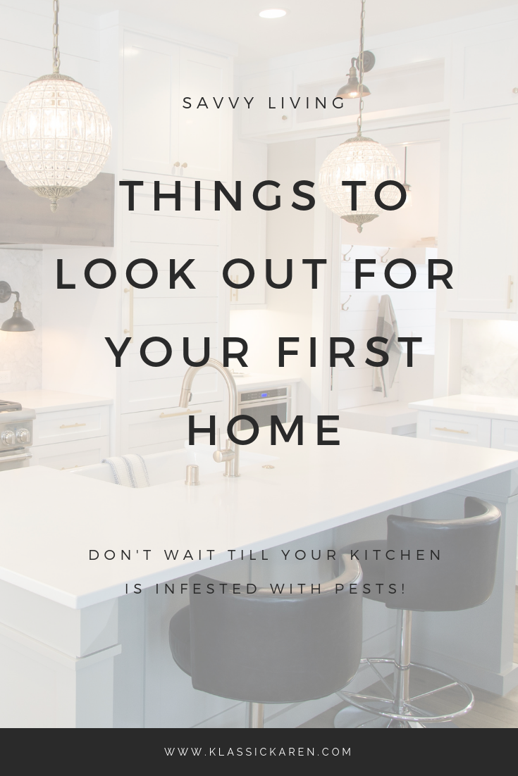 Klassic Karen on Things to look out for when buying your first home