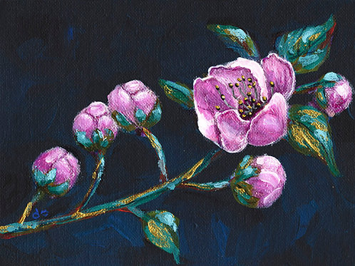 Pink Cherry Blossom 3 - Acrylic on Canvas 6x8in