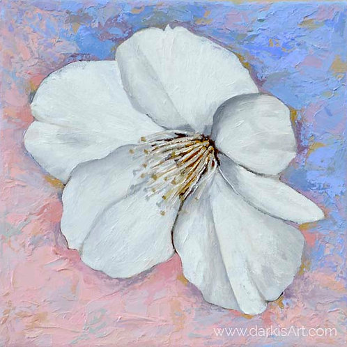 Cherry Blossom - Hopeful Sakura - Oil on Canvas 10x10in