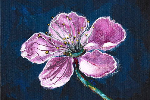 Pink Cherry Blossom 1 - Acrylic on Canvas 5x7in
