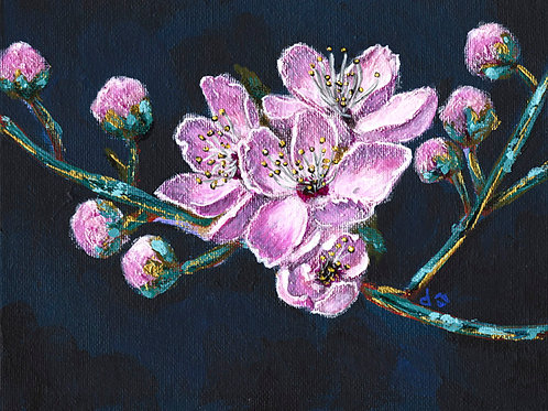 Pink Cherry Blossom 2 - Acrylic on Canvas 6x8in
