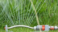 Natural Lawn Care Guide