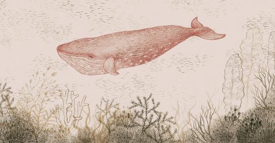Whale Cloth Banner