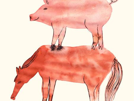 Orwell's Animal Farm - CE2 & autres curieux
