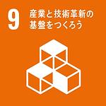 SDGs-9