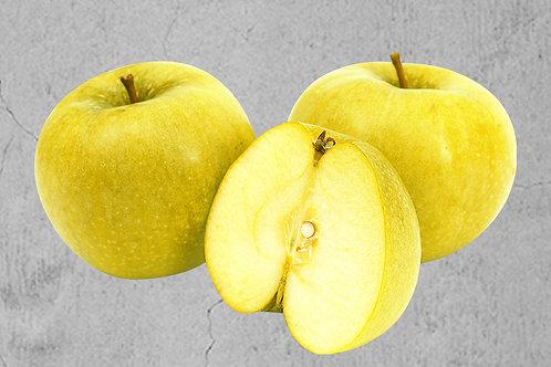 Mini Apfelbaum Goldie