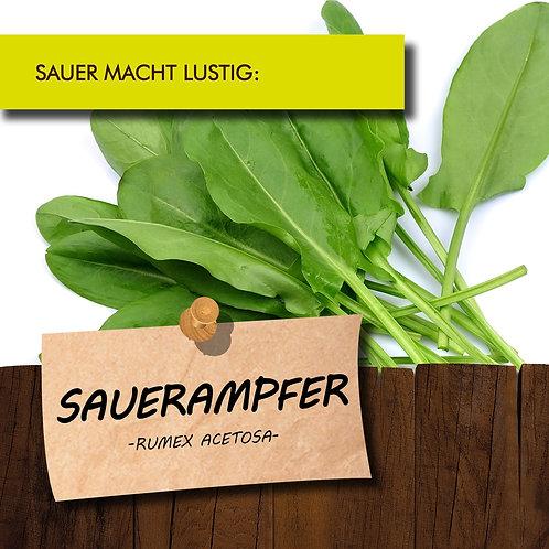 Sauerampfer