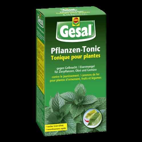 Pflanzen-Tonic