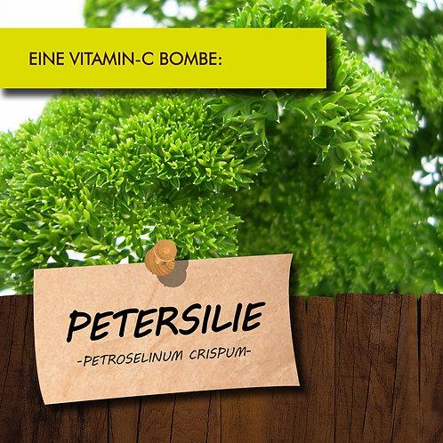 Petersilie Krause
