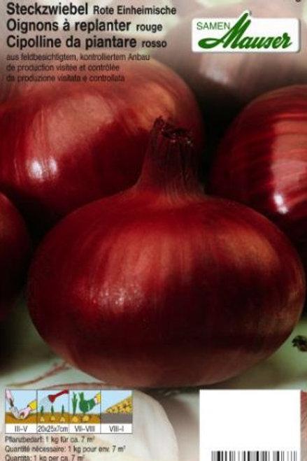 Rote Steckzwiebeln 500 g