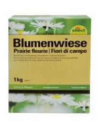 Blumenwiese 1 kg. für 50 m2