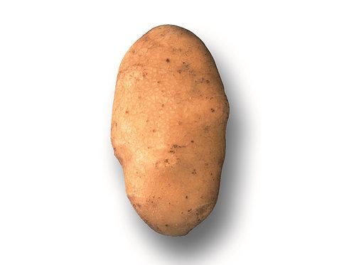 Kartoffeln Bintje 2.5 kg.
