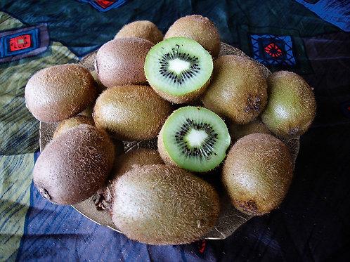 Kiwi Solissimo