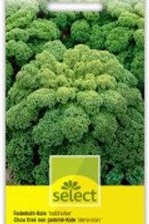 Federkohl grün halbhoher