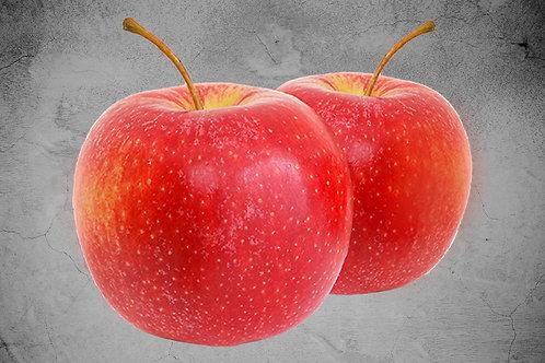 Mini Apfelbaum Cox