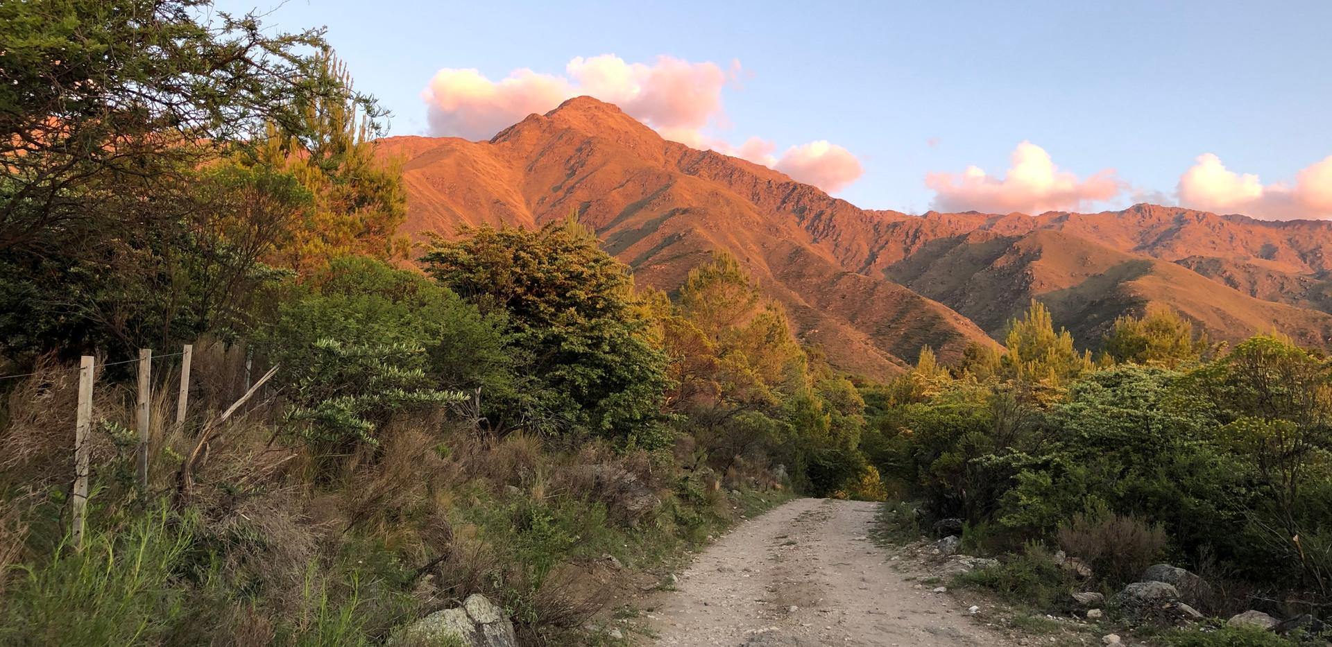 Camino.jpg