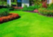 Green lawn ,Landscape formal, front yard