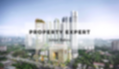 Property expert (1).png