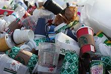 plastic_waste_imge.jpg