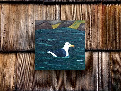 """Great Black-Backed Gull"""