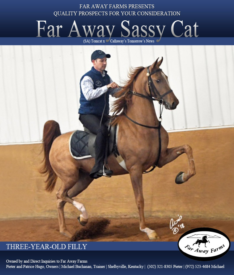 Far-Away-Farms_Sassy-Cat_Blast_March_201
