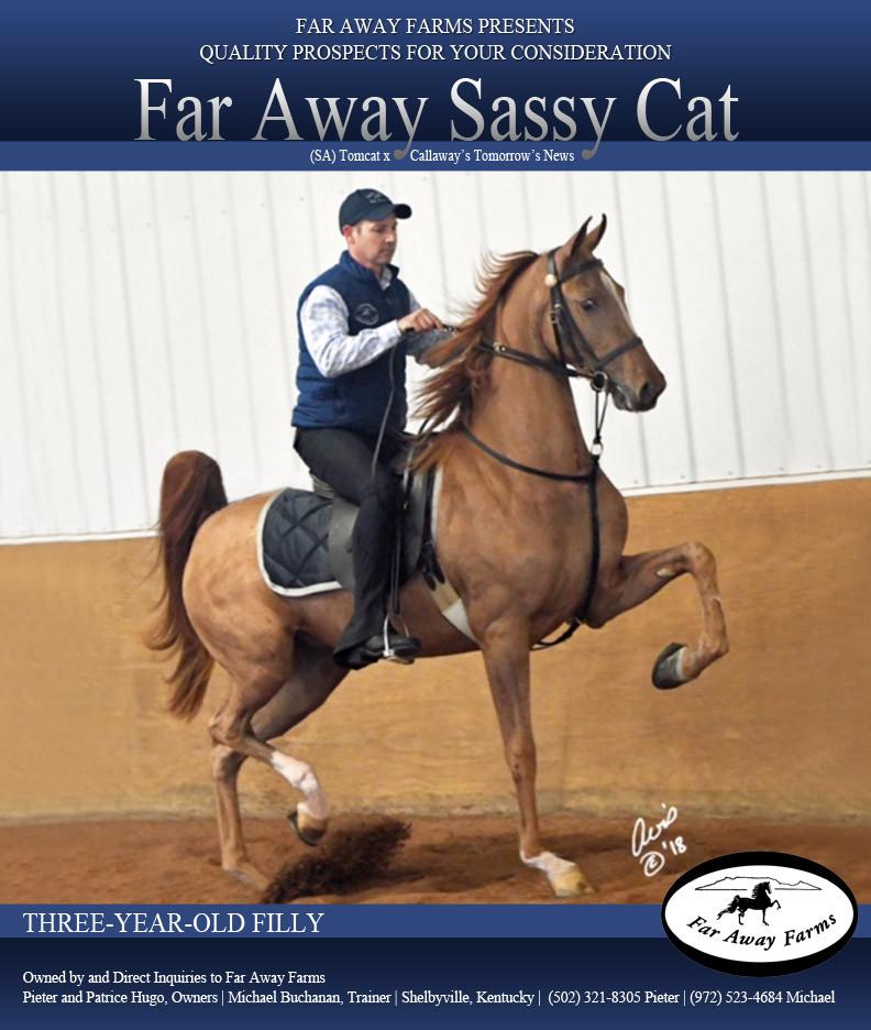 Far-Away-Farms_Sassy-Cat_Blast_March_201