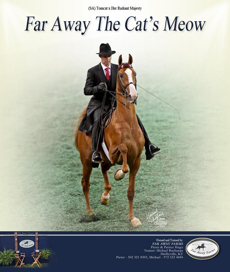 Far-Away-Farms_Cats-Meow_SS-Blast_Nov_20