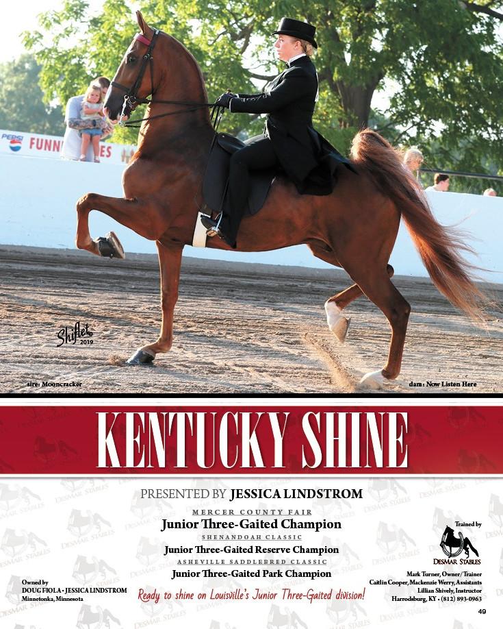 KentuckyShine.jpg