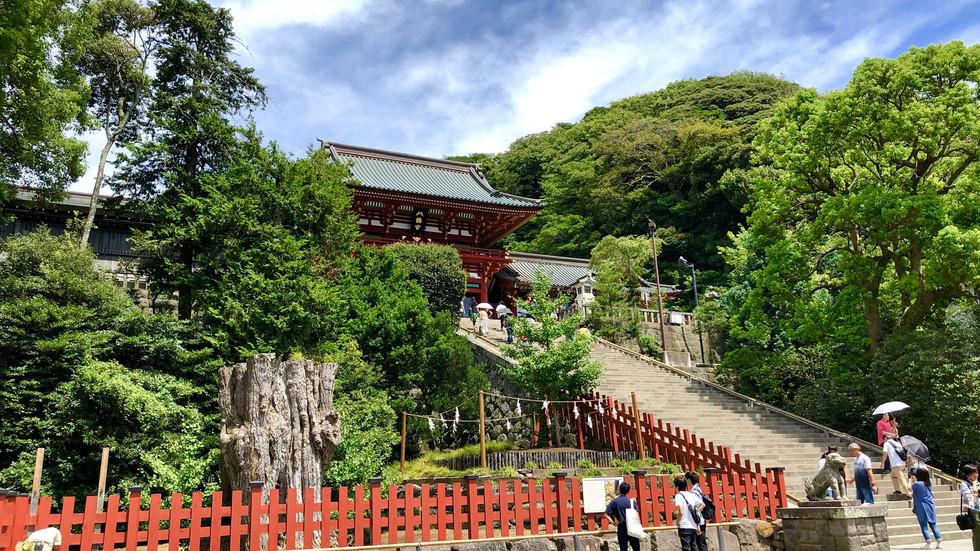 Kamakura PH