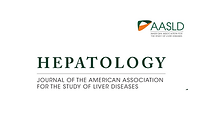 Letter to the Editor: Examining HBV RNA kinetics during NA treatment - are NA multifunctional antiviral agents?