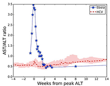 Modeling Challenges of Ebola Virus -Host Dynamics during Infection and Treatment