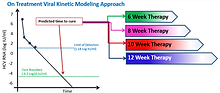 Efficacy and Safety of Modeling-Based Response Guided Therapy with Direct Acting Anti-Viral Agents for Treatment Optimization in Chronic Hepatitis C Infection- A Pilot Study