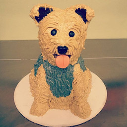 3D Yorkie Cake #3Dcake #creativecakes #y