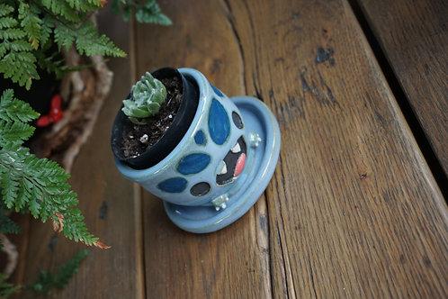 Small salamander planter!