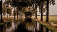 Beemster - Hollandia