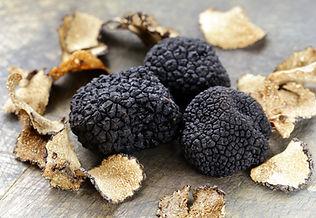 expensive rare black truffle mushroom -