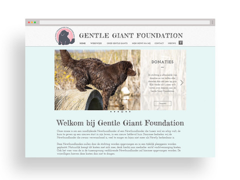 Gentle Giant Foundation