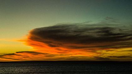Dolphins Bay - Australia