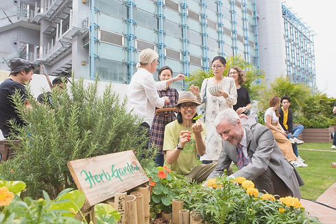 A photo of Herb Garden Spiral and guests harvesting herbs