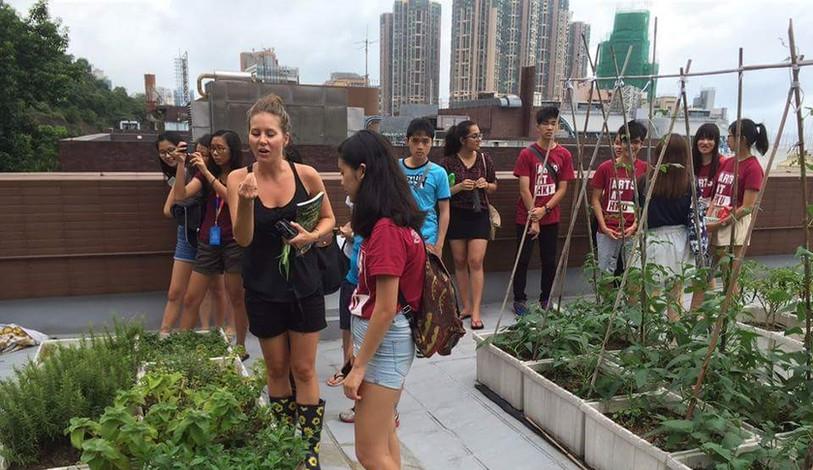 Rooftop Farm Visit