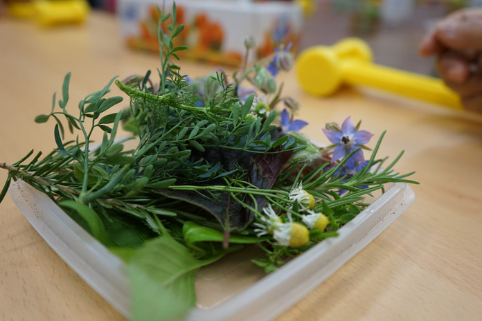 Herbs and flowers for pressing workshop