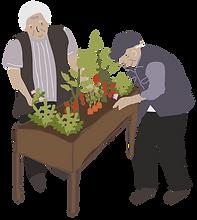 Old people gardening