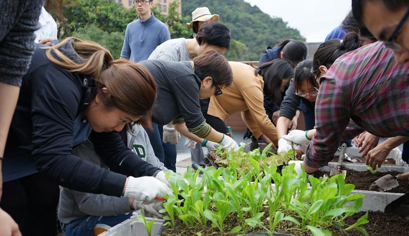 Sustainable Farming Workshop