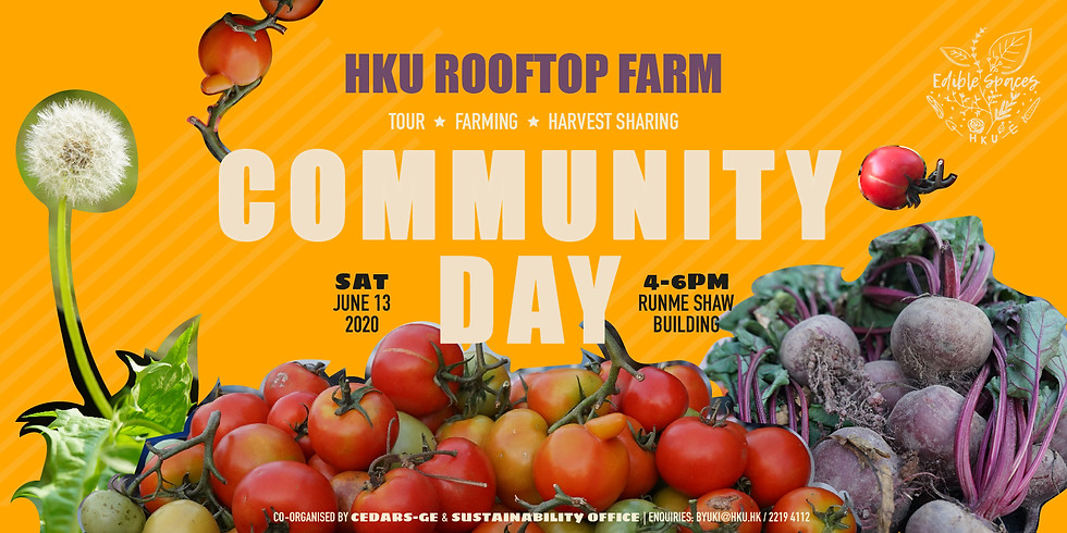 Rooftop Farm Community Day   June